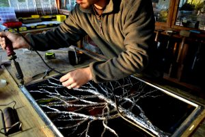 Cain Inc. Winter Tree Residential Stained Glass Art Glass Contemporary Solder Sculptured Daniel White
